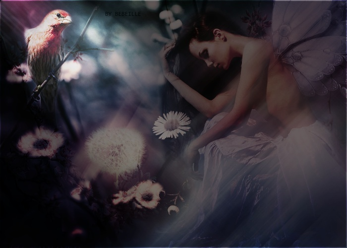 I come from a wonderful dream now reality seems dull and unattractive. Fae11