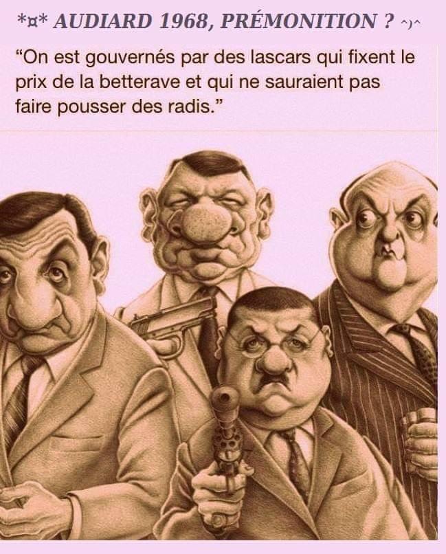 Humour du jour - Page 16 55500710