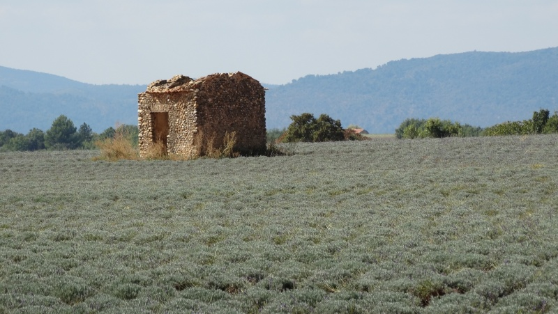 Les Alpes de Haute Provence Dsc01214