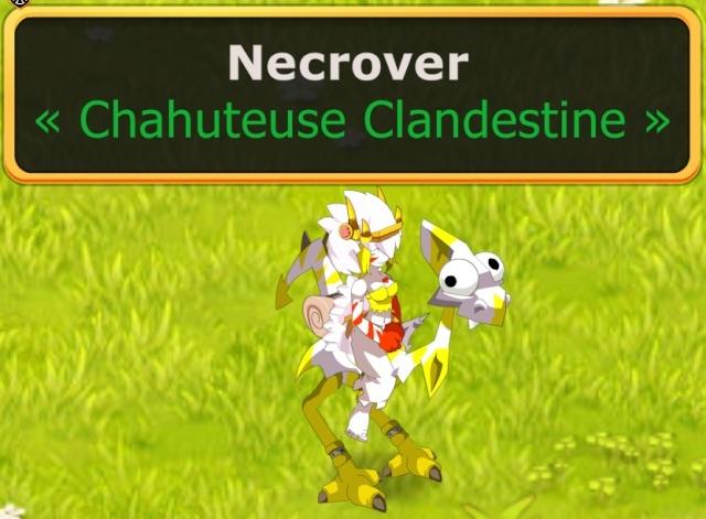 Candidature de Necrover Nec214