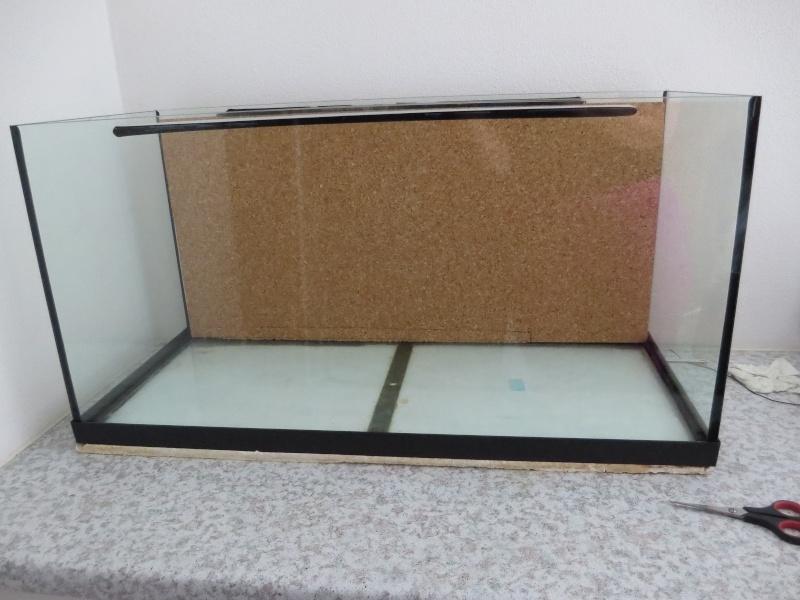 Umbau kleines Aquarium zum Orchidarium 2014-119