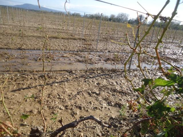 orage de grêle sur l Aude 10 jours après  02313