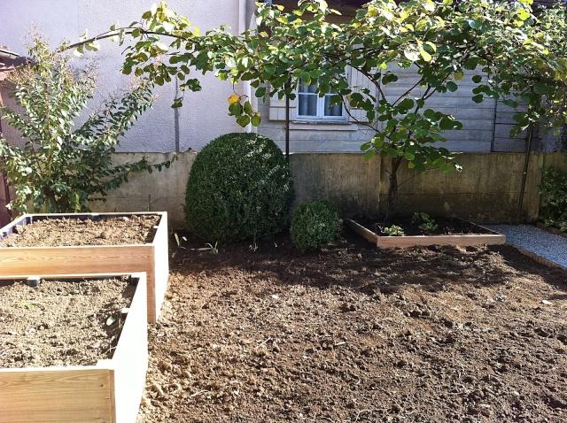 conseils pour petit jardin à relooker Img_1510