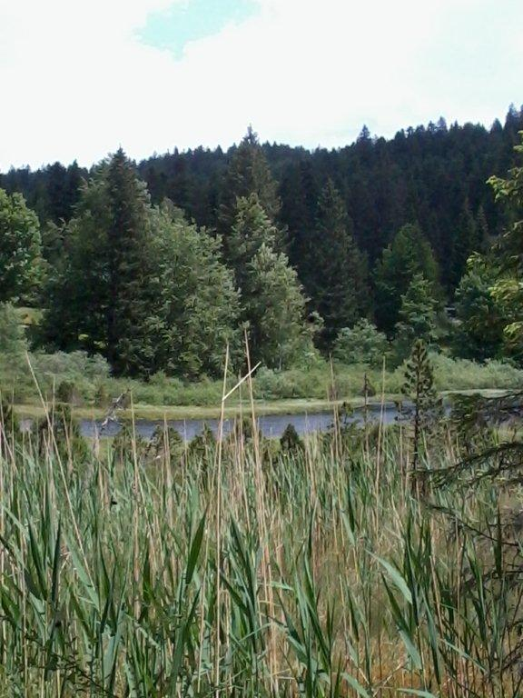 Balade au Lac du Luitel 2014-019