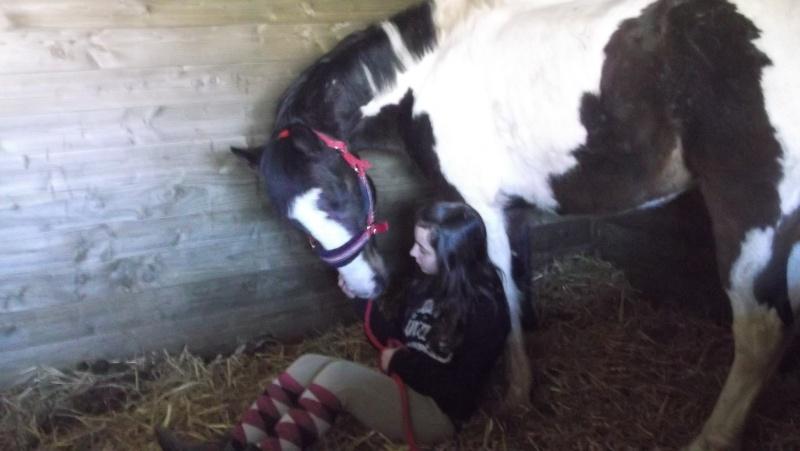 Présentez-nous vos chevaux ! <3 Dscf2010