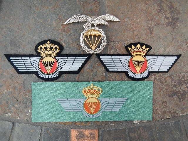 Spanish  Para patches Ft_bra10