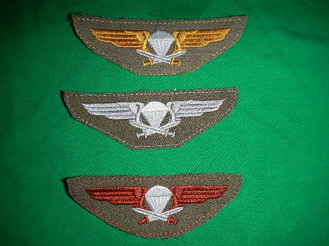 Finnish Para insignia Old_ba17