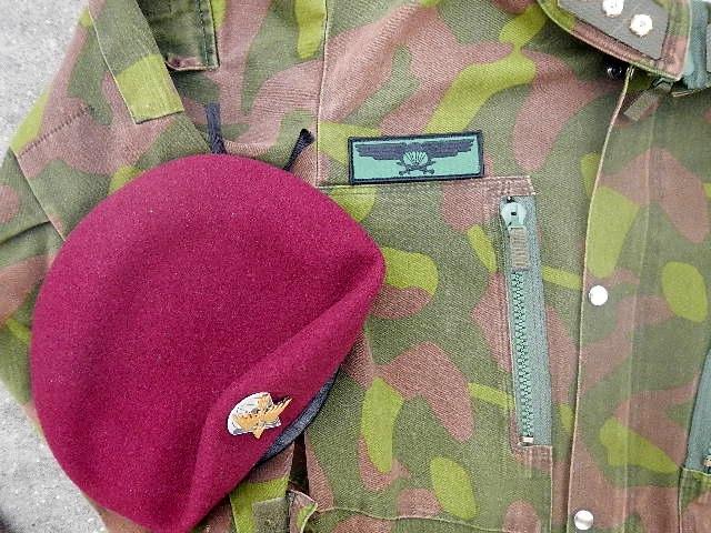 Finnish Para insignia Utti_t15