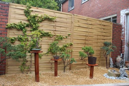 jardin zen  Apres10