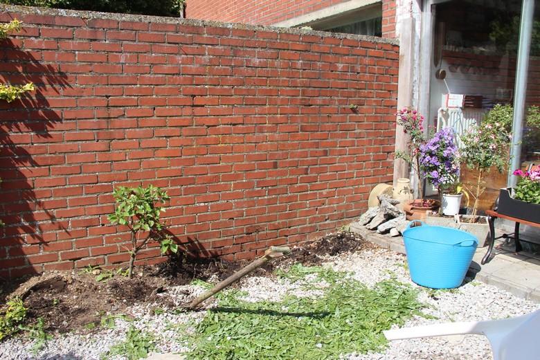 jardin zen  Avant10