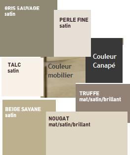Living: quelles couleurs pour les murs? Couleu11