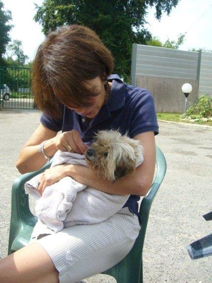 OUKY ou le retour inespéré d'une petite chienne après sept ans d'absence Ouky_110