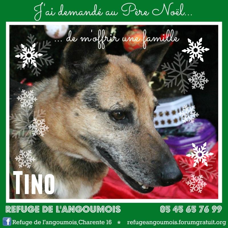 Calendrier de l'Avent 2014 Tino_f11