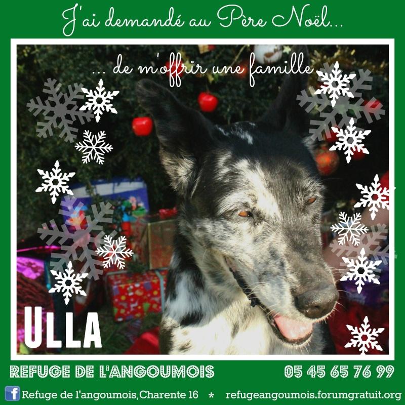 Calendrier de l'Avent 2014 Ulla_f11