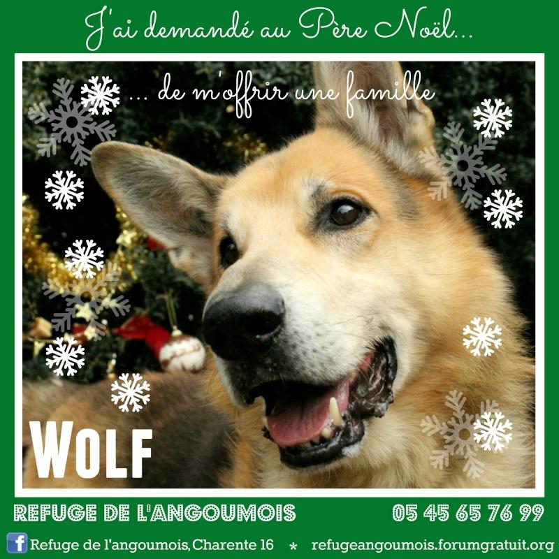 Calendrier de l'Avent 2014 Wolf_f11