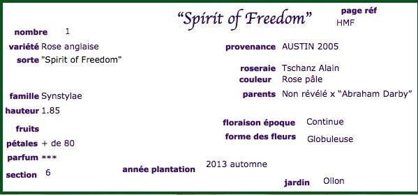 Spirit of Freedom (Austin - 1998) Screen10