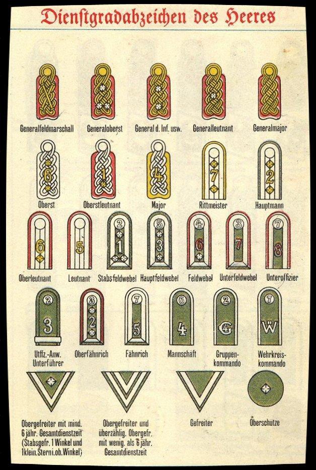 Insignes de grade allemand 31781710