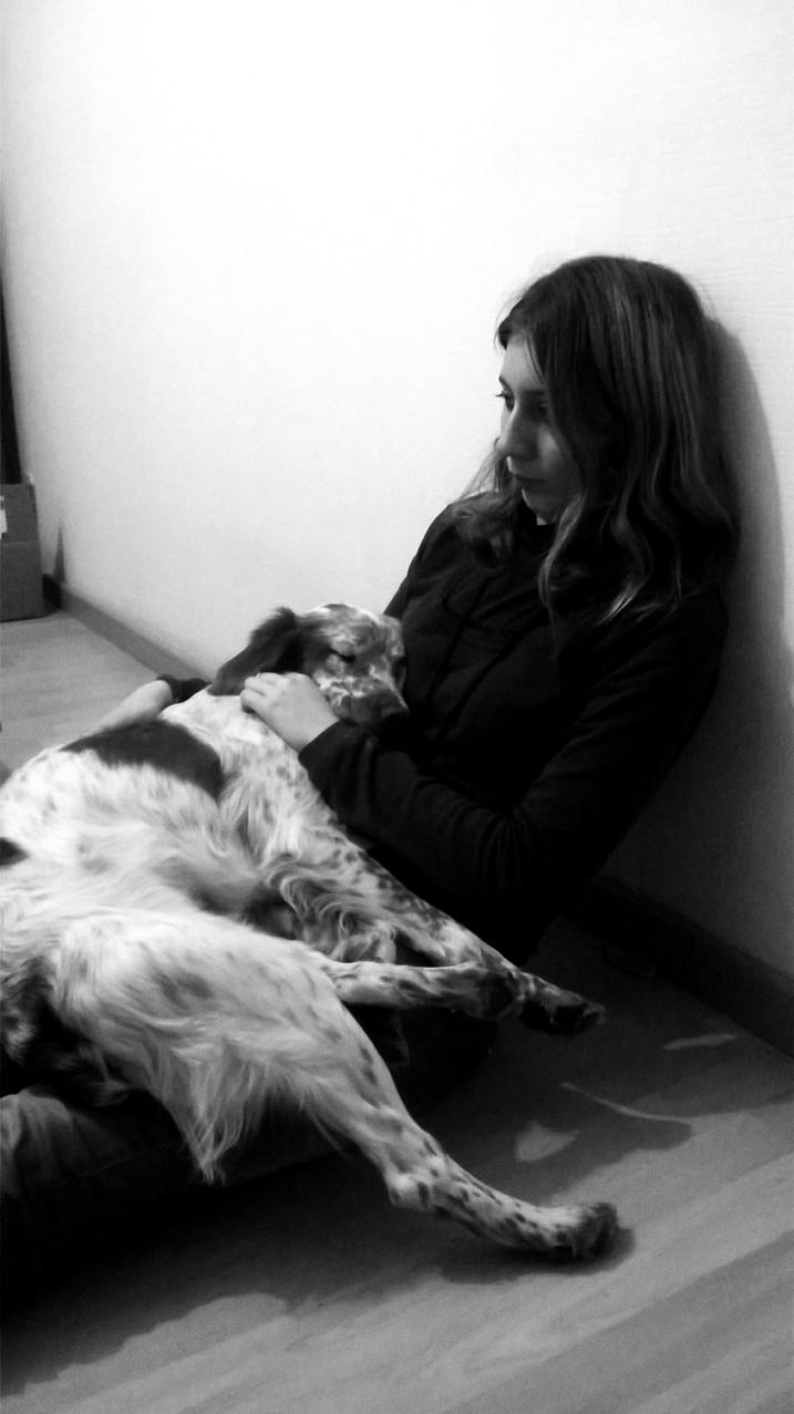 Choisir un chien adulte Wp_20129