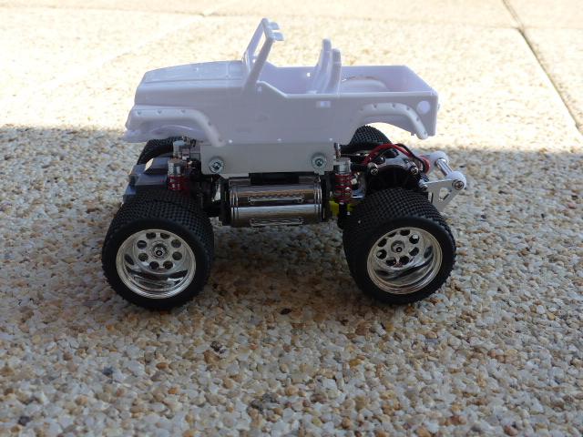 mini monster wangler ( terminée ) P1020715