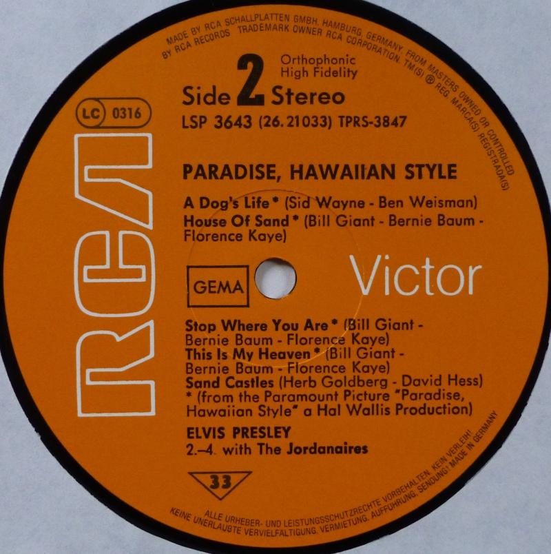 PARADISE, HAWAIIAN STYLE P1030720