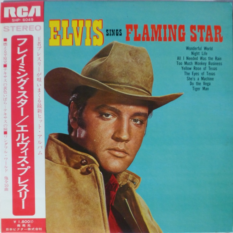 FLAMING STAR P1040540