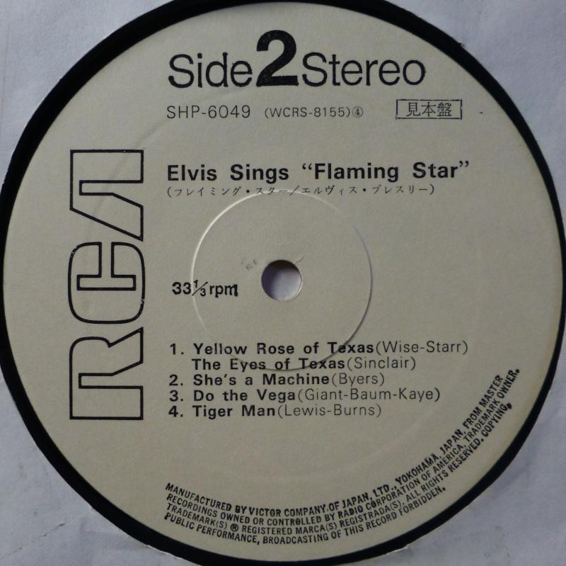 FLAMING STAR P1040546