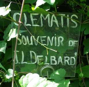 Plantarium de Gaujacq -40- !!! 10082030