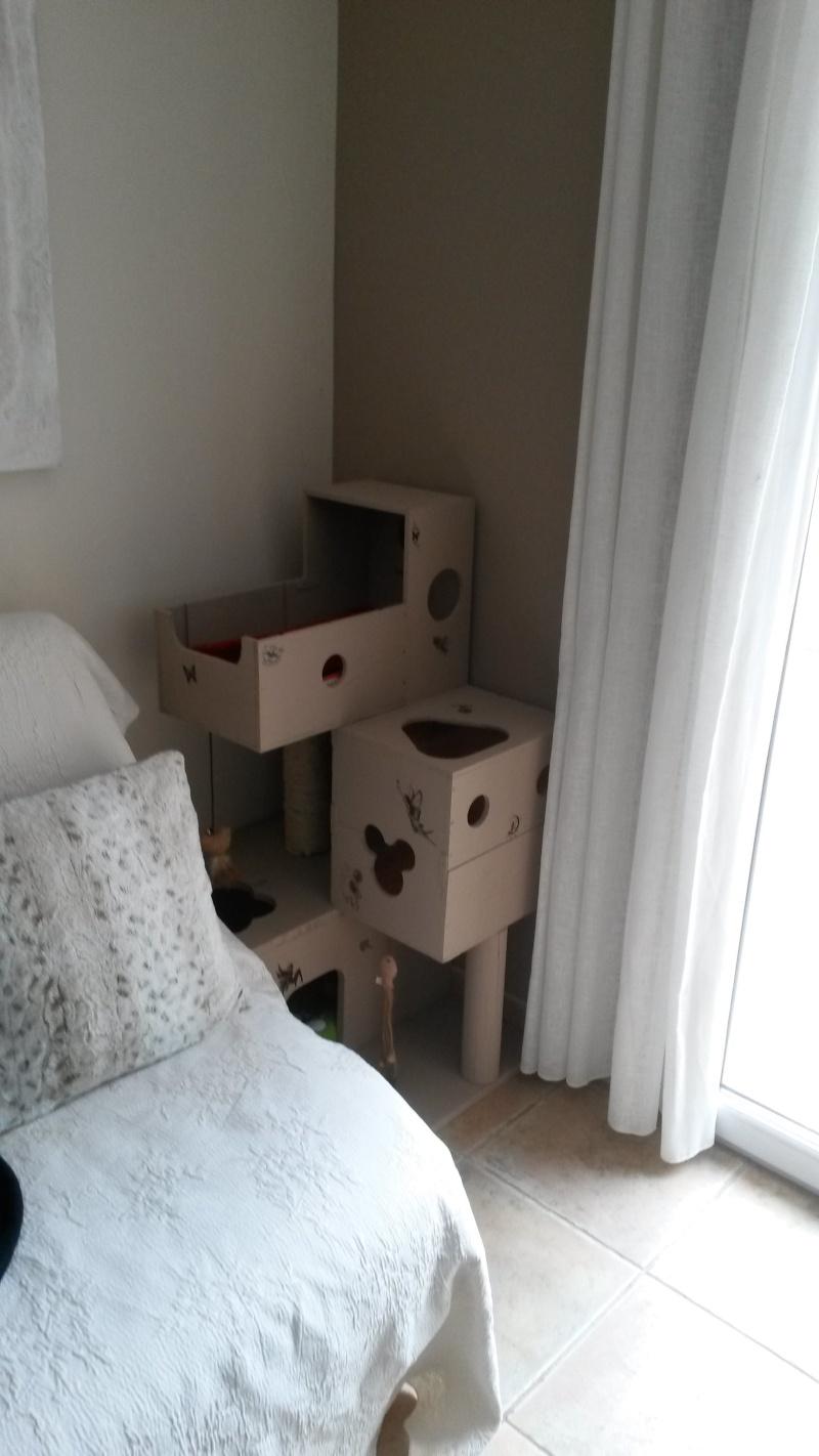 "Arbre à chat ""home made"" 20140612"