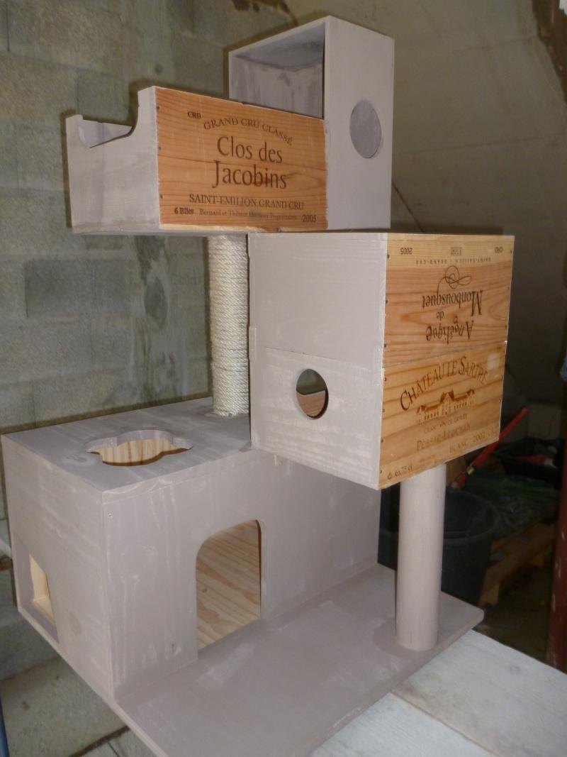 "Arbre à chat ""home made"" P1010620"