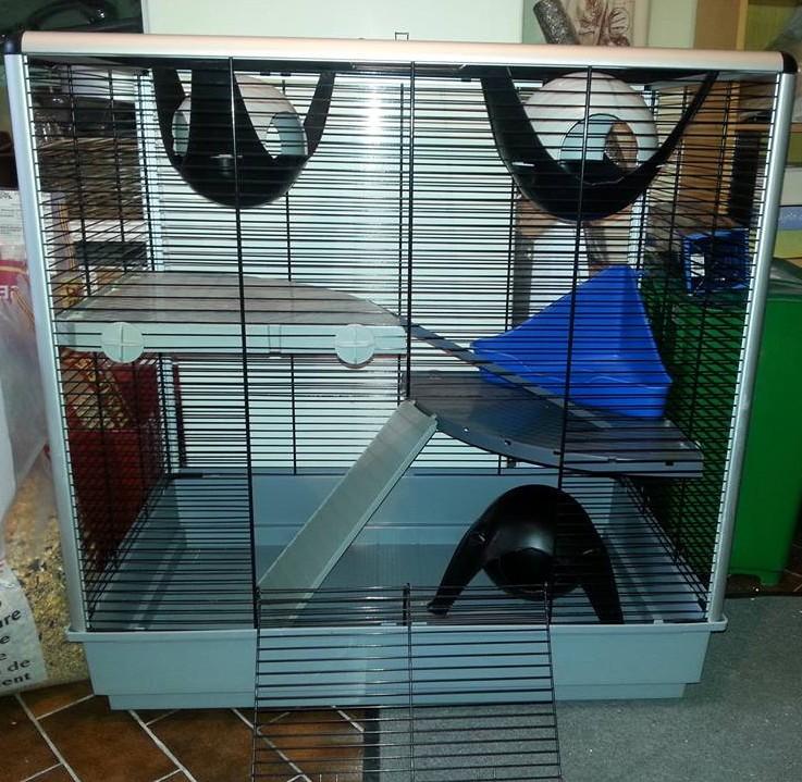 Lot de 2 cages: Jenny KD & Furet Plus + accessoires ~ dept 95  Cage112