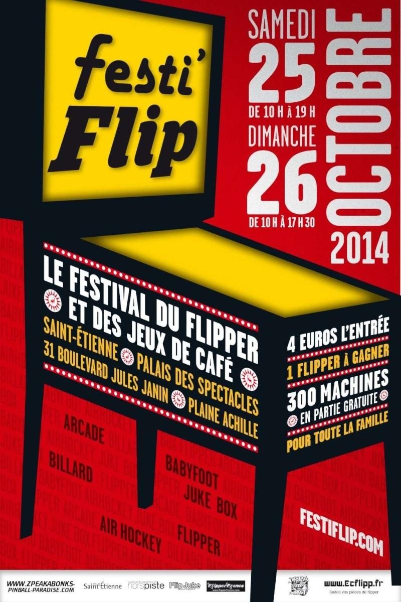 Festi Flip 2014 à Saint-Etienne. Festif10