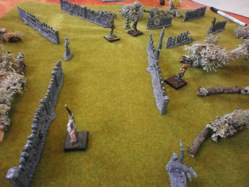 Rapport de Bataille Vixens VS Fraternité du Carnage Dybut_13