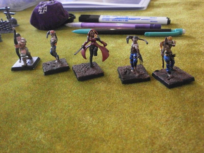 Rapport de Bataille Vixens VS Fraternité du Carnage Elfes_12
