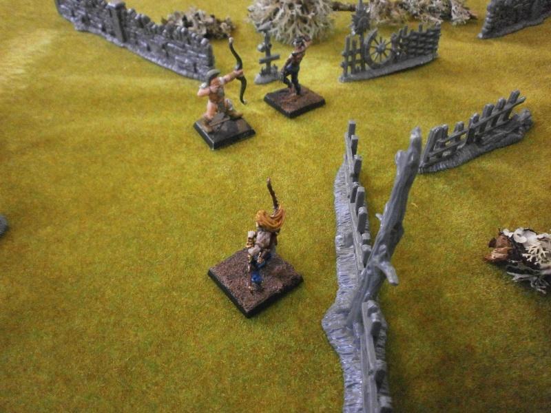Rapport de Bataille Vixens VS Fraternité du Carnage Zoom_f10