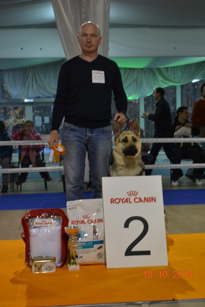 """VIP DOG ШОУ 2014"" 18.10.14 Dsc_0527"