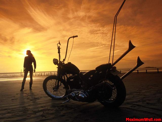 66000 Harley10