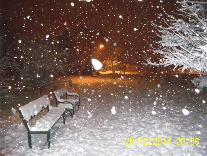 Снег во Македонија - Page 2 Dsci0010