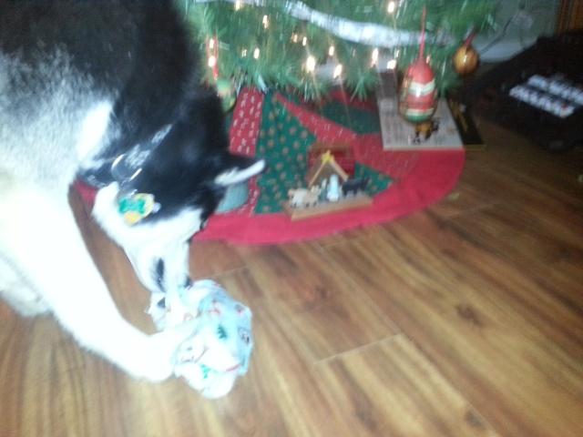 Secret Santa REVEAL! 2014 20141226