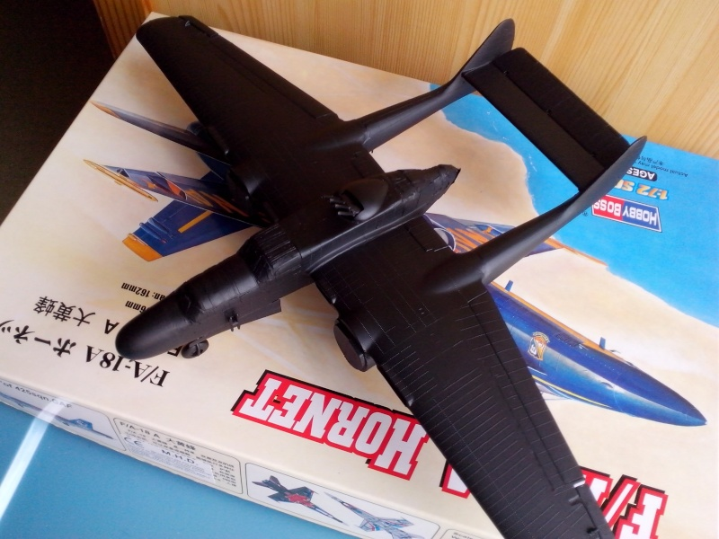 P61 black Widow (heller) Img_2052