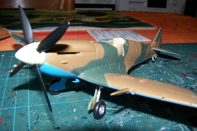 Spitfire Mk VIII > Morotaï étè 1945 (fini) 100_7714