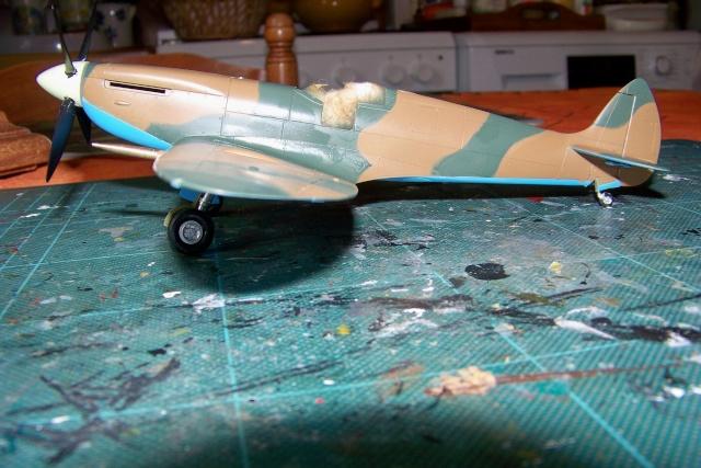 Spitfire Mk VIII > Morotaï étè 1945 (fini) 100_7715