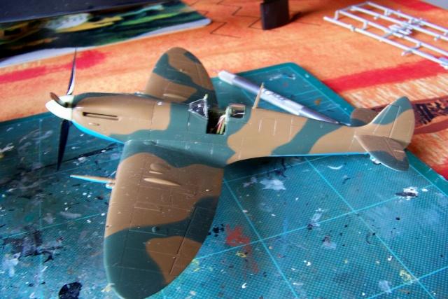 Spitfire Mk VIII > Morotaï étè 1945 (fini) 100_8012