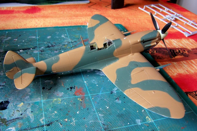 Spitfire Mk VIII > Morotaï étè 1945 (fini) 100_8013