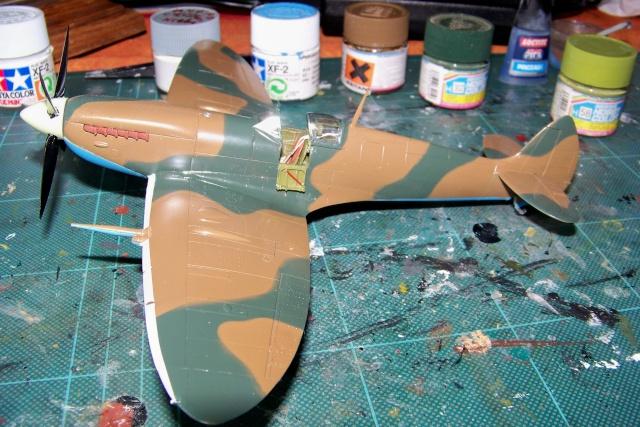 Spitfire Mk VIII > Morotaï étè 1945 (fini) - Page 2 100_8023