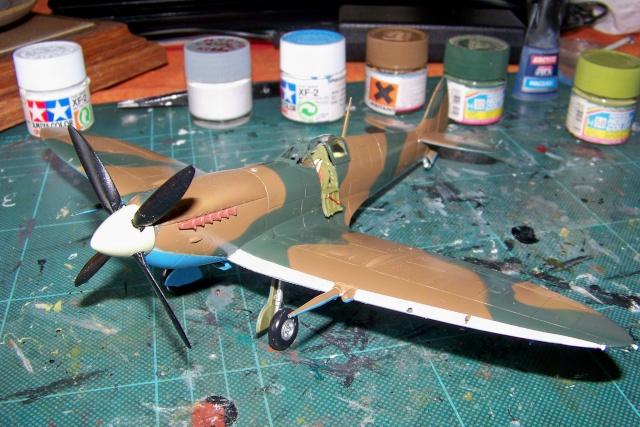 Spitfire Mk VIII > Morotaï étè 1945 (fini) - Page 2 100_8025