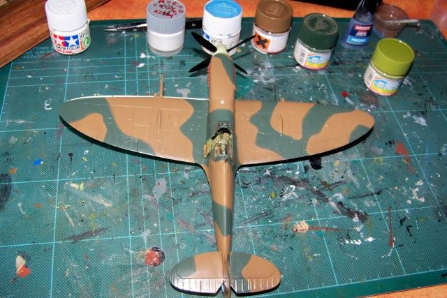 Spitfire Mk VIII > Morotaï étè 1945 (fini) - Page 2 100_8026