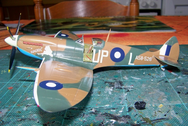 Spitfire Mk VIII > Morotaï étè 1945 (fini) - Page 2 100_8027