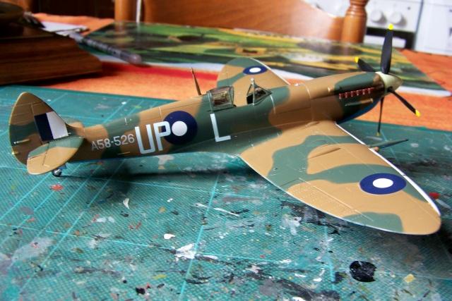 Spitfire Mk VIII > Morotaï étè 1945 (fini) - Page 2 100_8029