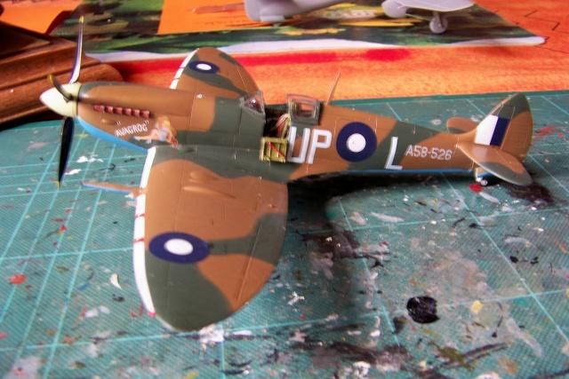 Spitfire Mk VIII > Morotaï étè 1945 (fini) - Page 2 100_8110