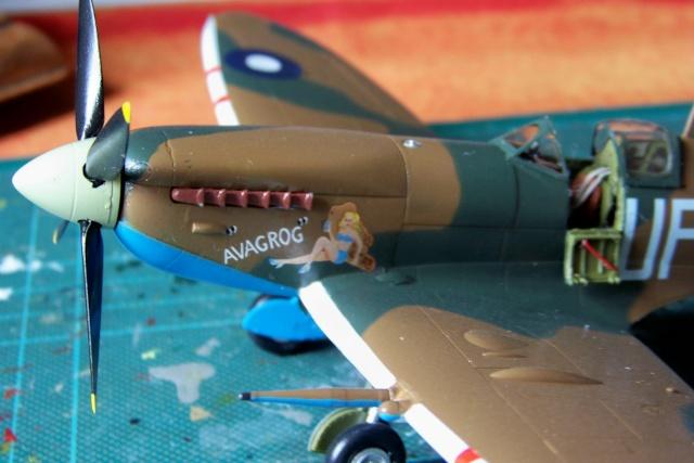Spitfire Mk VIII > Morotaï étè 1945 (fini) - Page 2 100_8111